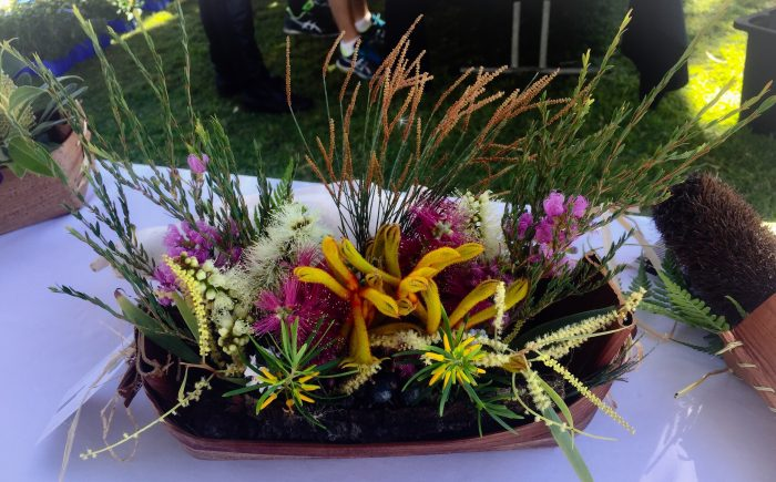 Greenwood Flower, Native Flowers, Flower Arrangements